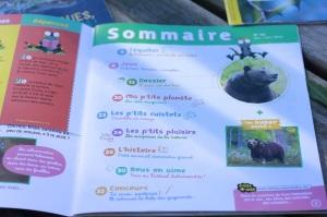 magazine la petite salamandre la salamandre junior avis blog planete parentage