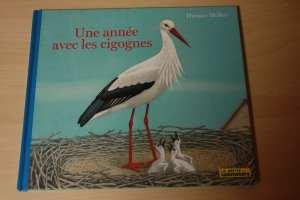 livre une année avec les cigognes la petite salamandre, migration lecture automne blog planete parentage